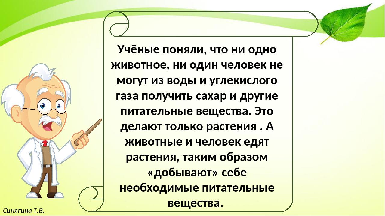 Синягина Т.В. Учёные поняли, что ни одно животное, ни один человек не могут...