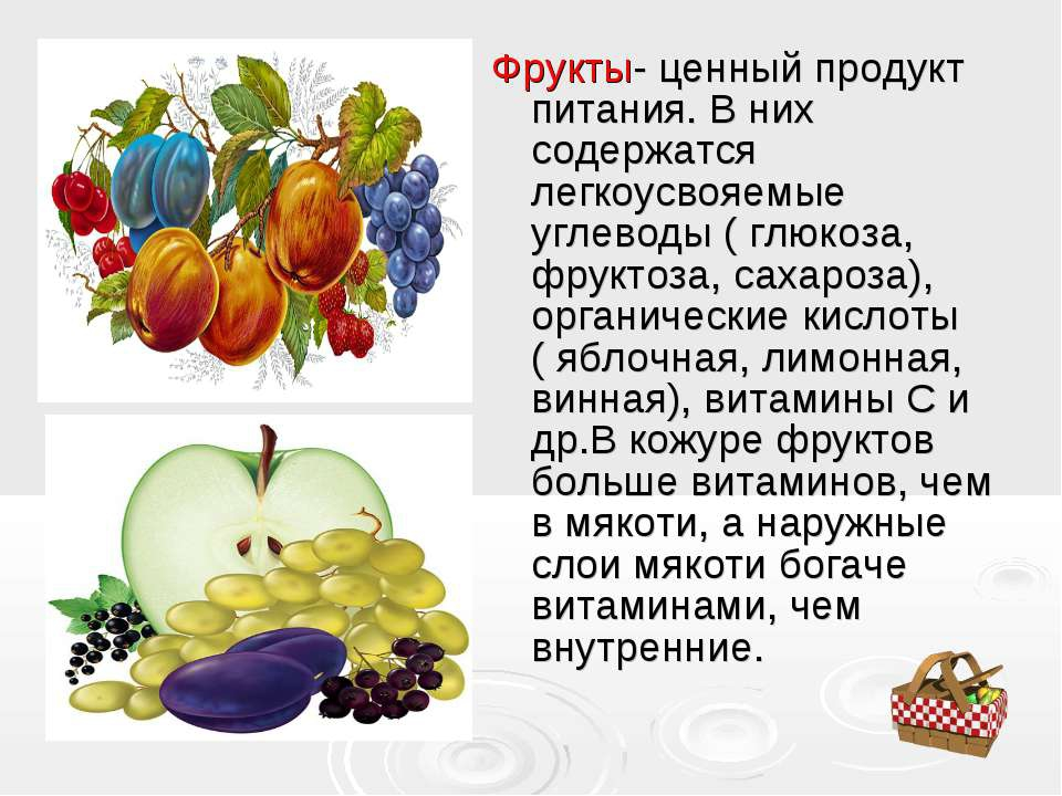 основных фрукты картинки сочинение возможность обучаться