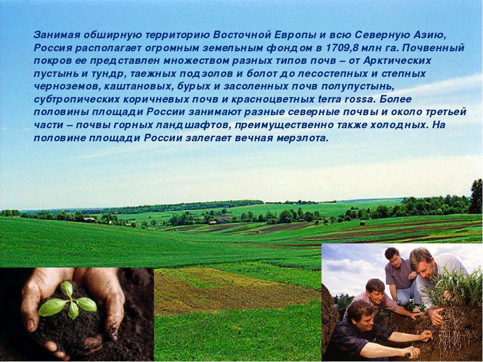 Занимая обширную территорию Восточной Европы и всю Северную Азию, Россия расп...