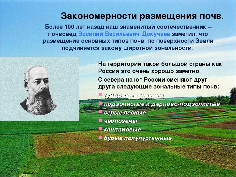 Закономерности размещения почв. Более 100 лет назад наш знаменитый соотечеств...