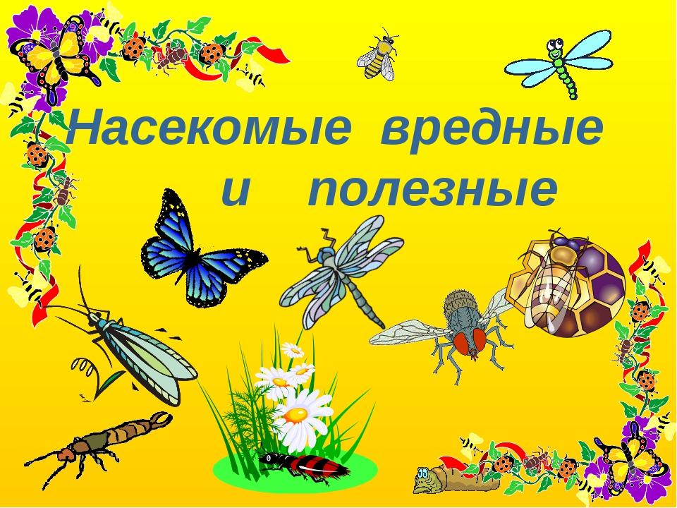 утвердило вредные и полезные насекомые с картинками ламинат интерьере