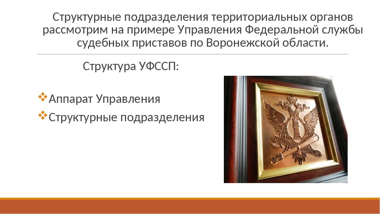 Официальный сайт судебных приставов проверить задолженность воронежская область
