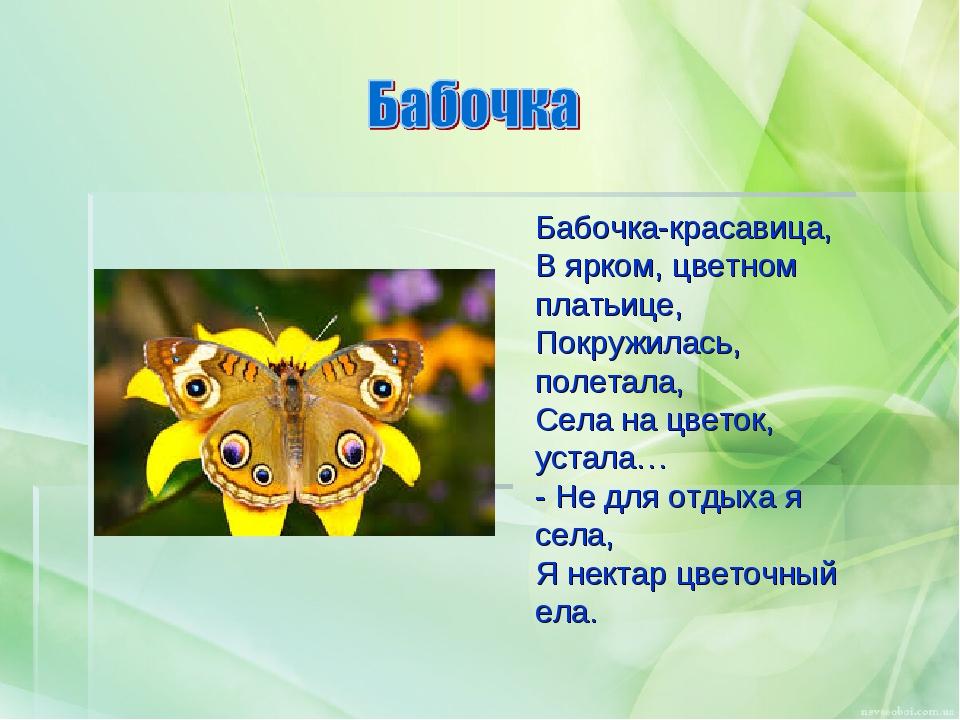 Бабочка-красавица, В ярком, цветном платьице, Покружилась, полетала, Села на...