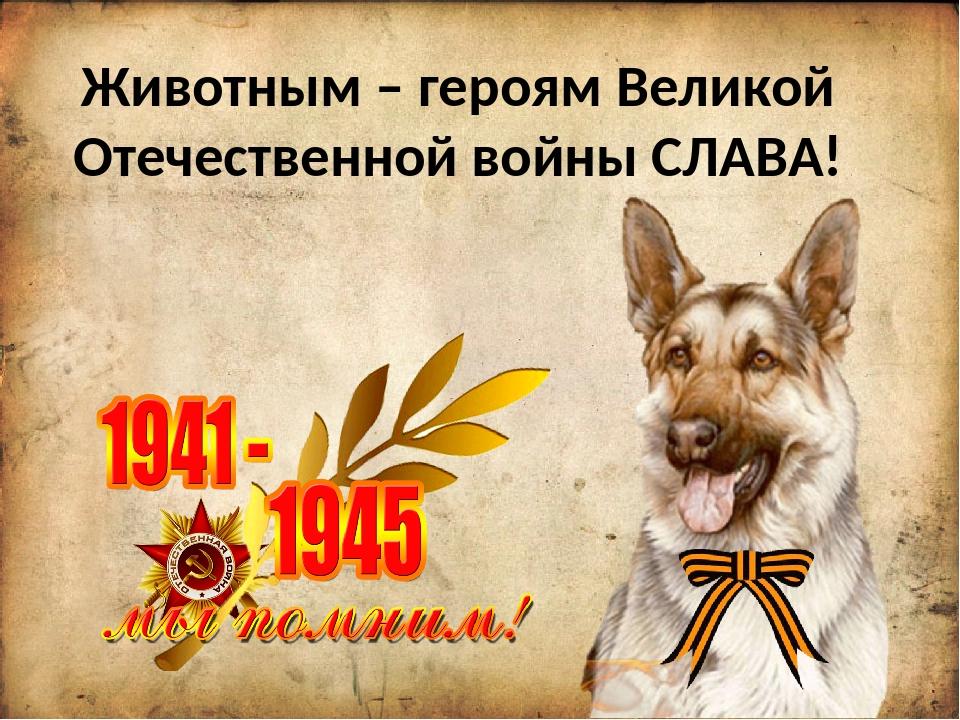 Животным – героям Великой Отечественной войны СЛАВА!