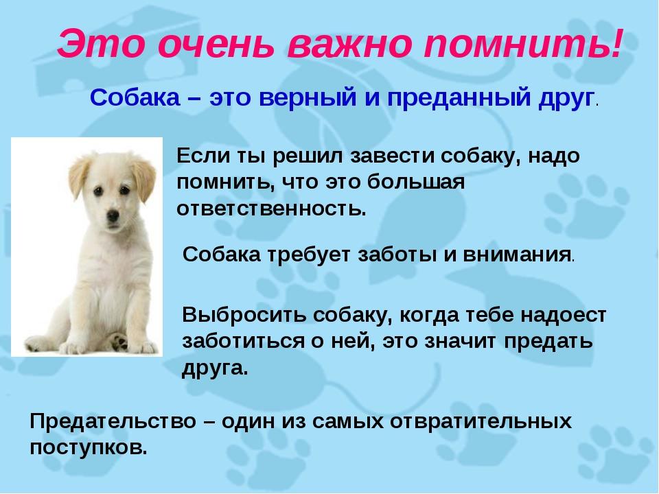 Картинки собака друг человека с текстом