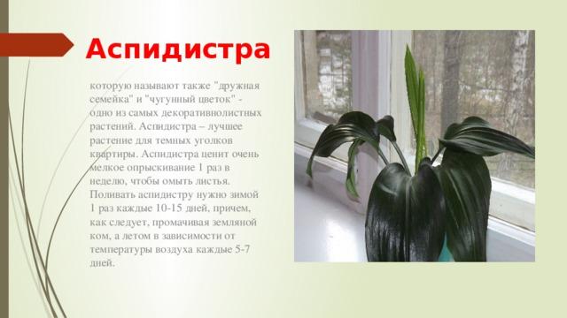 hello_html_27d02f43.jpg