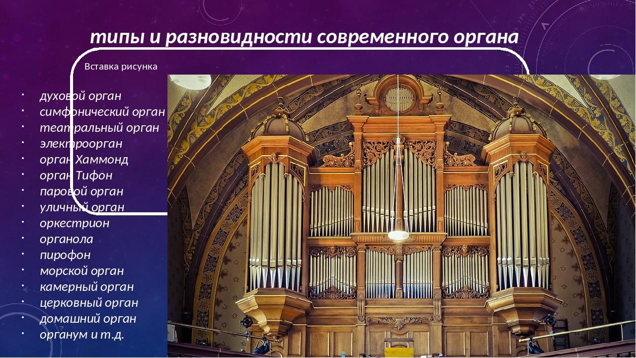 типы и разновидности современного органа духовой орган симфонический орган те...