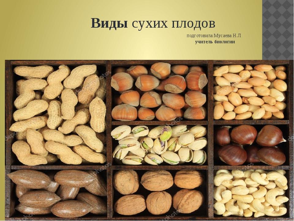 Видысухих плодов подготовила:Мусаева Н.Л учитель биологии