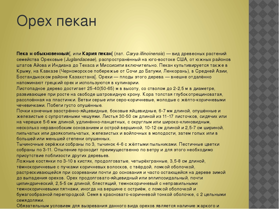 Орех пекан Пека́н обыкновенный[, илиКария пекан[(лат.Carya illinoinensis)...