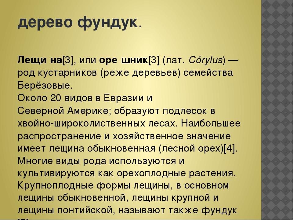 деревофундук. Лещи́на[3], илиоре́шник[3](лат.Córylus)—родкустарников(...