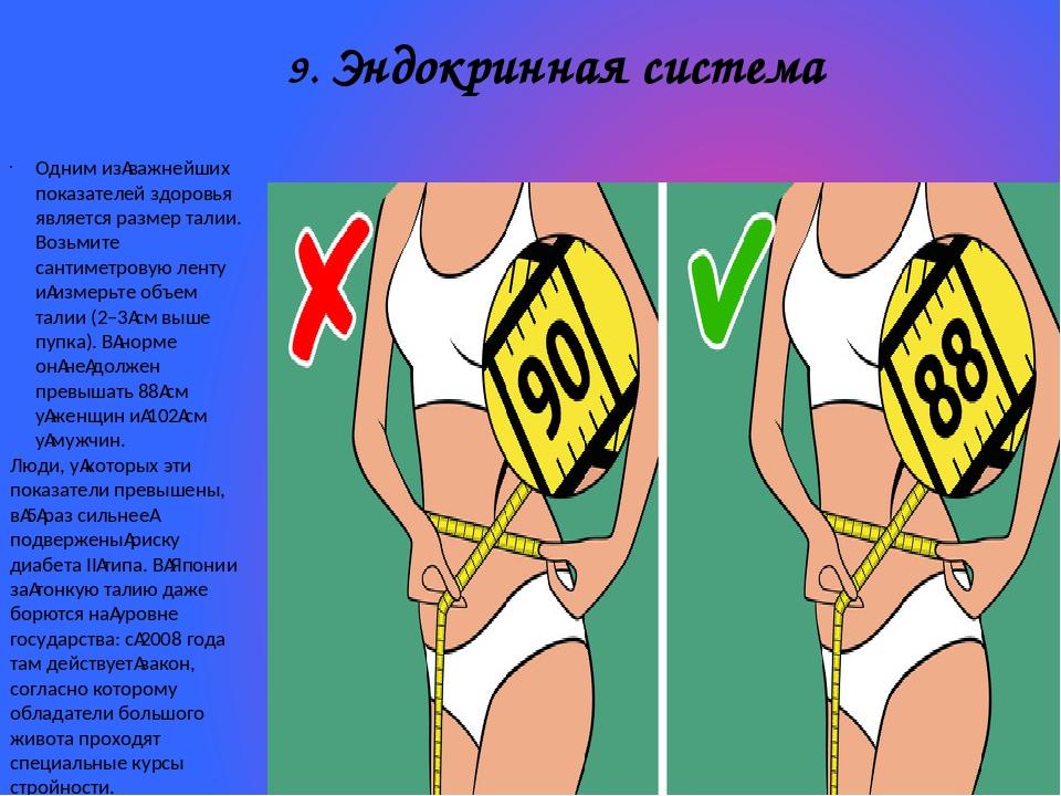 9. Эндокринная система Одним изважнейших показателей здоровья является разме...