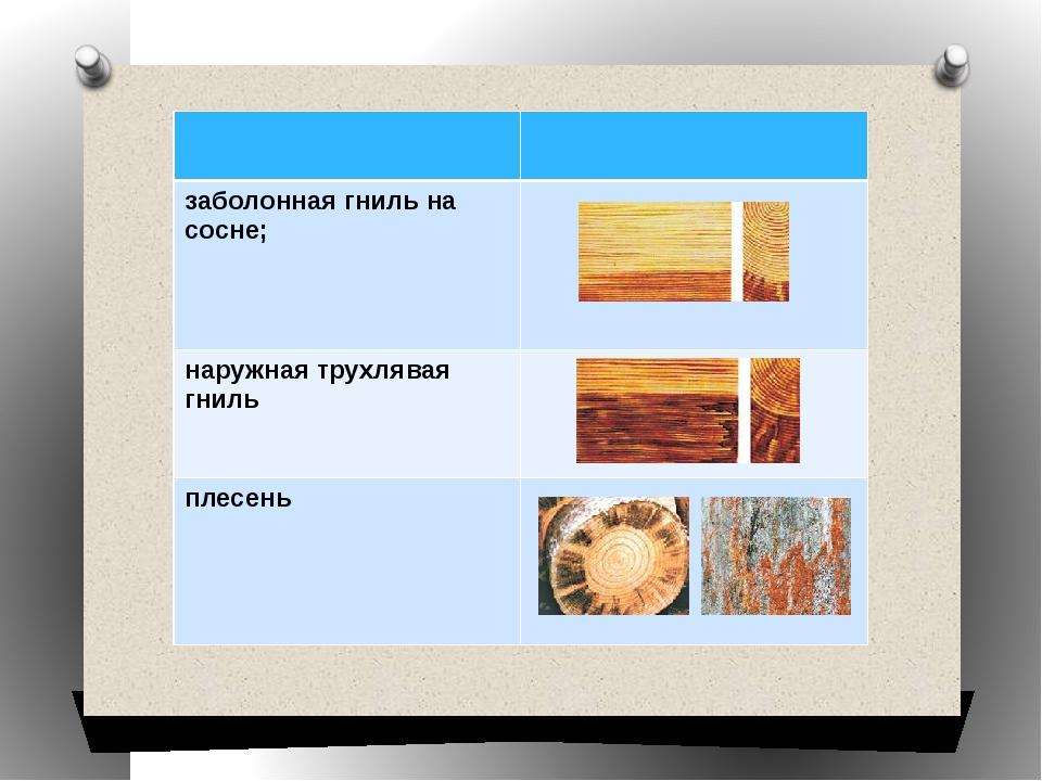 Технология 7 класс тесты пороки древесины 1 сучки 2 трещины 3 плесень