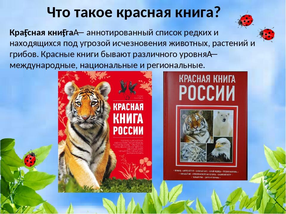 сообщение о красной книге картинки родиона все знали