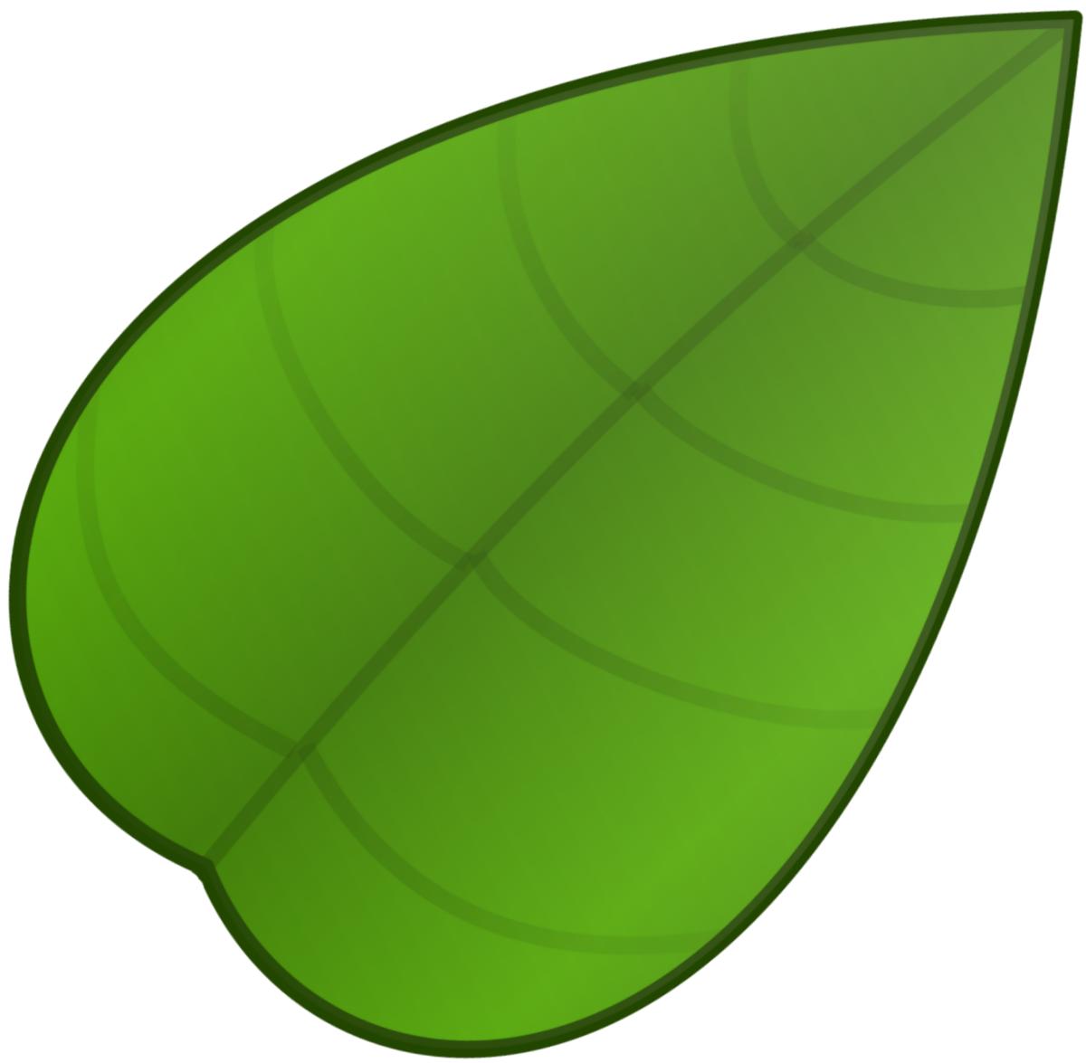 Картинка для детей зеленый листочек