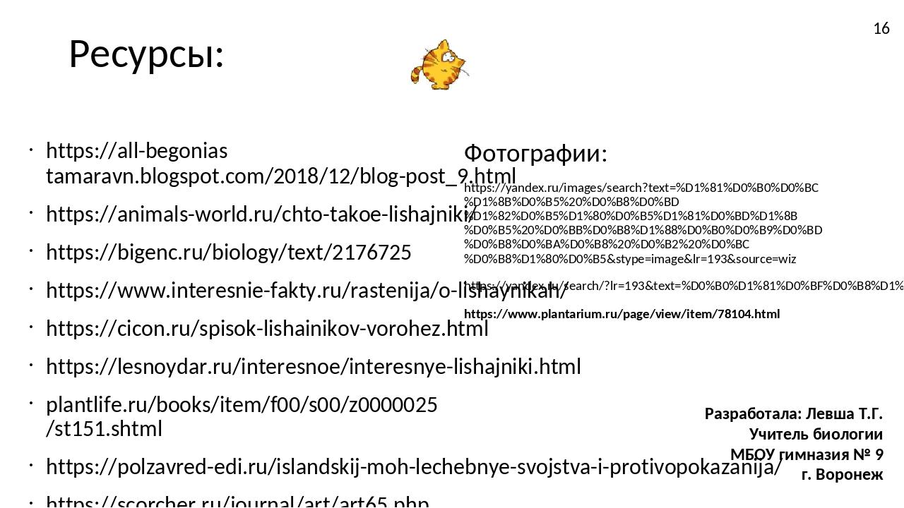 Ресурсы: https://all-begonias tamaravn.blogspot.com/2018/12/blog-post_9.html...