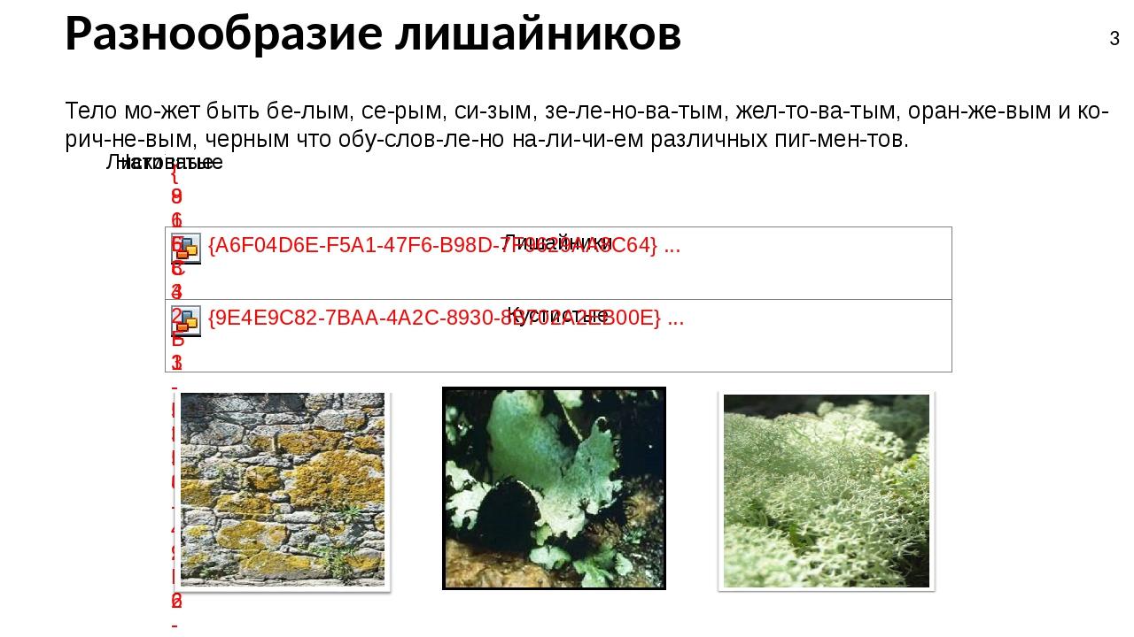 Разнообразие лишайников Тело может быть белым, серым, сизым, зеленова...