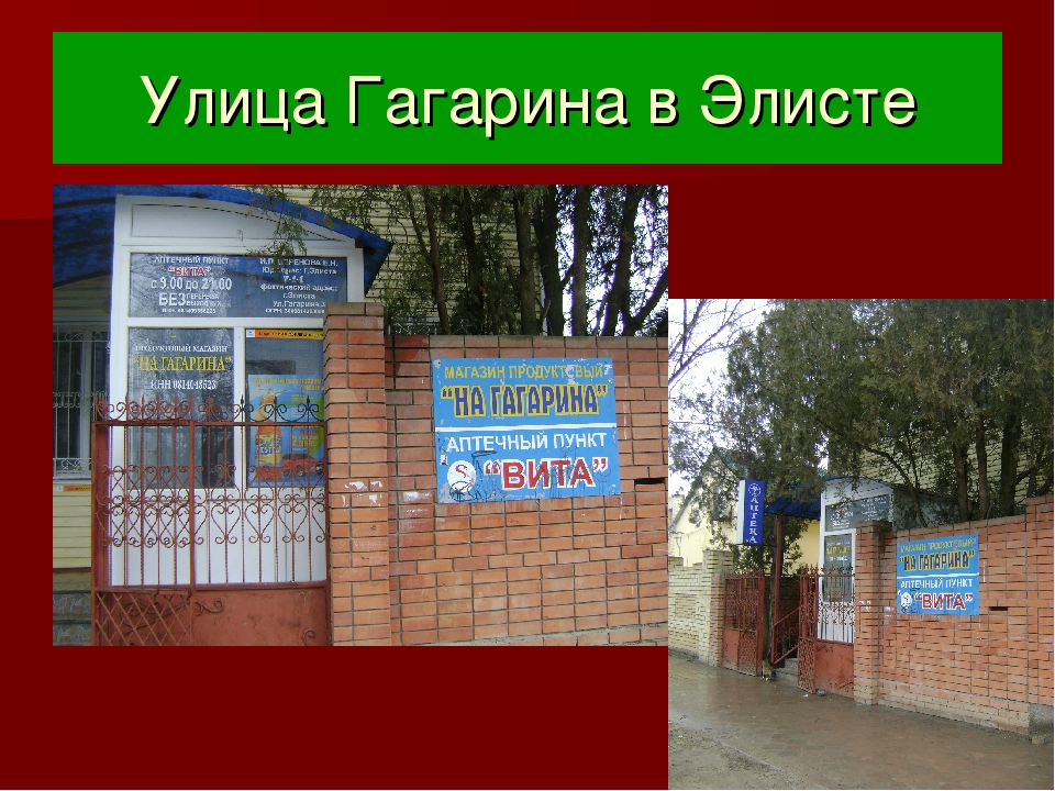 Улица Гагарина в Элисте