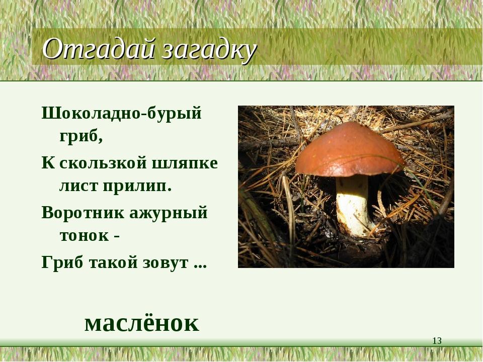 грибы загадки с картинками и ответами надевались гетры, которые