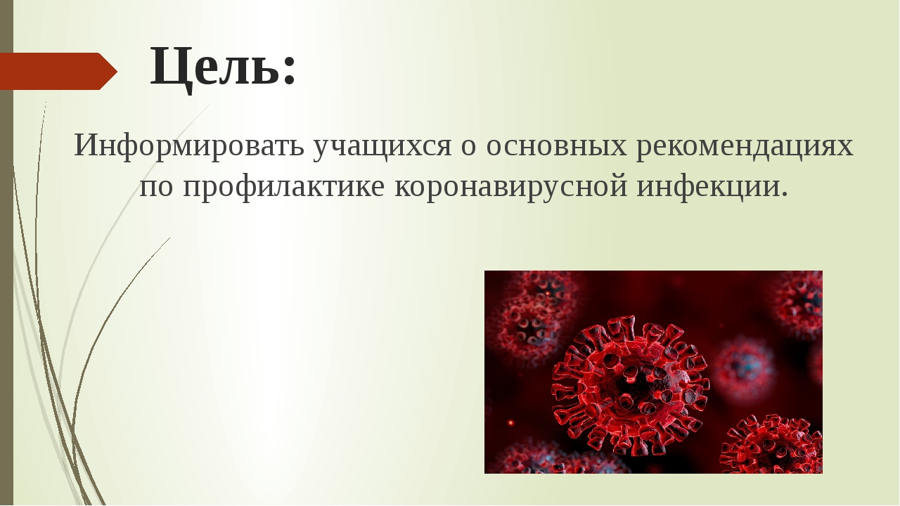 Цель: Информировать учащихся о основных рекомендациях по профилактике коронав...