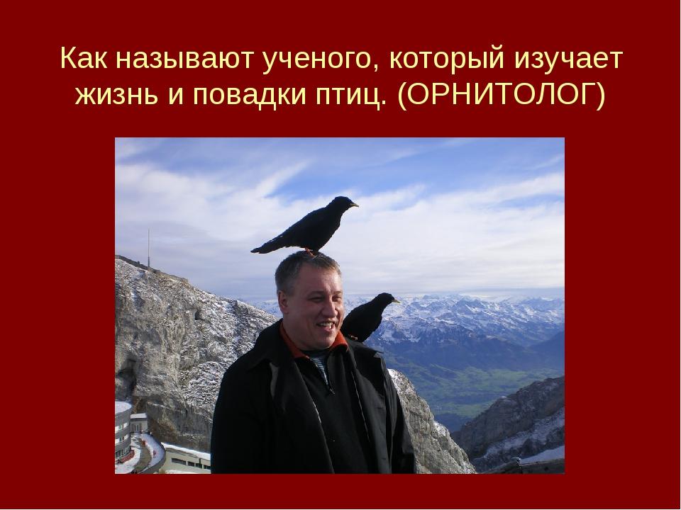Как называют ученого, который изучает жизнь и повадки птиц. (ОРНИТОЛОГ)