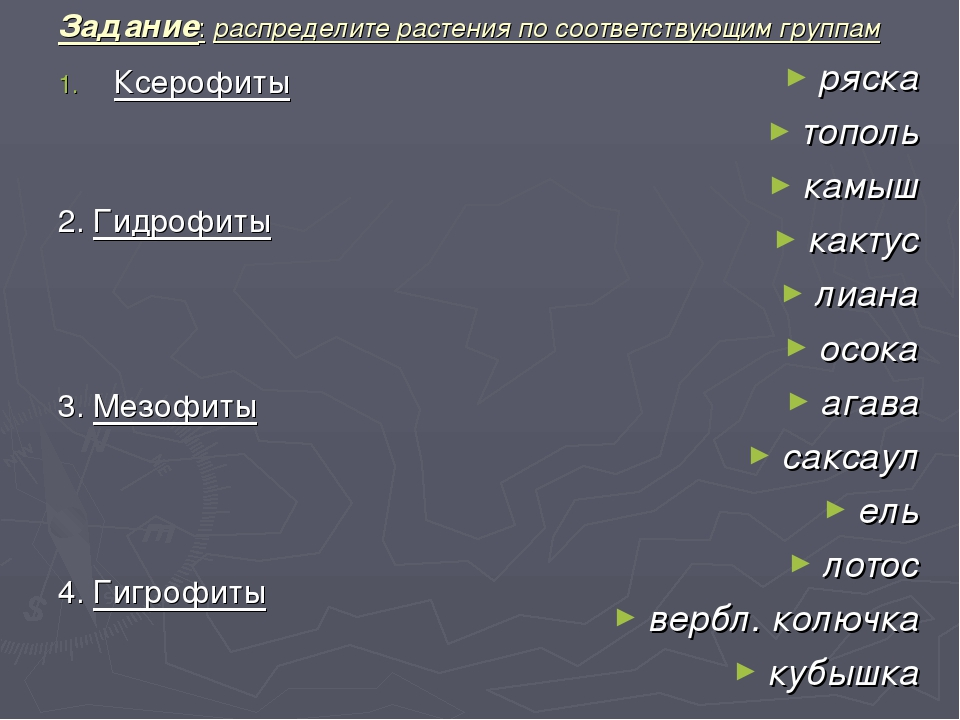 Задание: распределите растения по соответствующим группам Ксерофиты 2. Гидроф...
