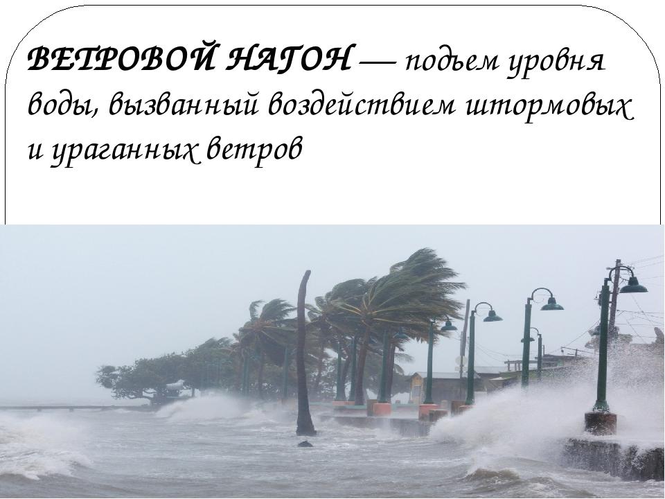 ВЕТРОВОЙ НАГОН — подъем уровня воды, вызванный воздействием штормовых и урага...
