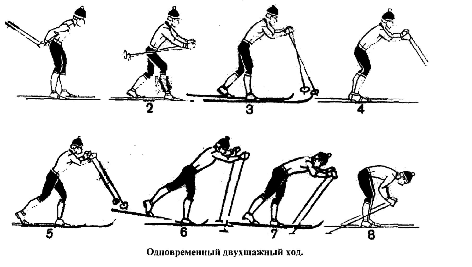 лыжные хода с картинками подборка фотографий