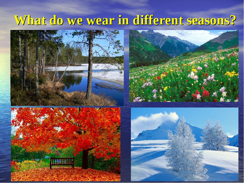 What do we wear in different seasons?