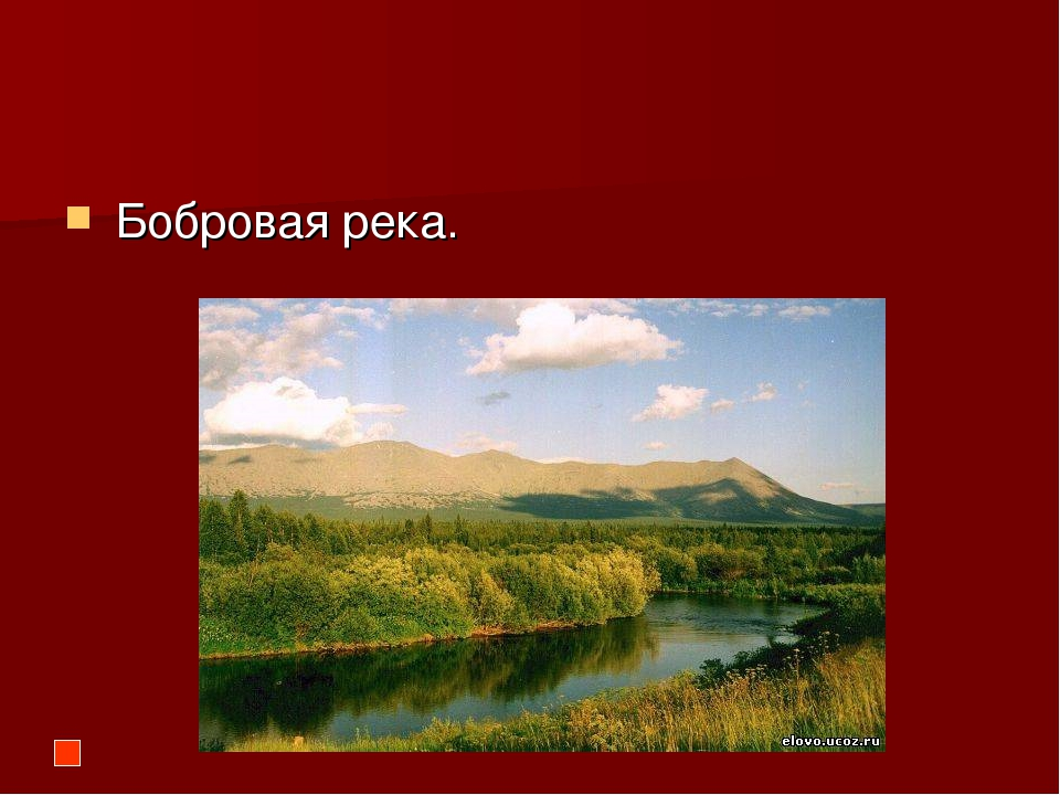 Бобровая река.