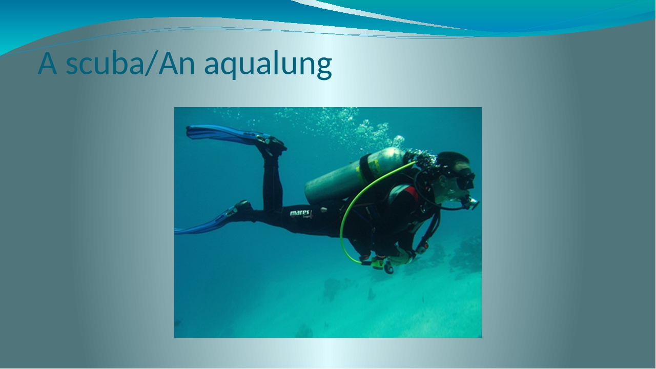 A scuba/An aqualung