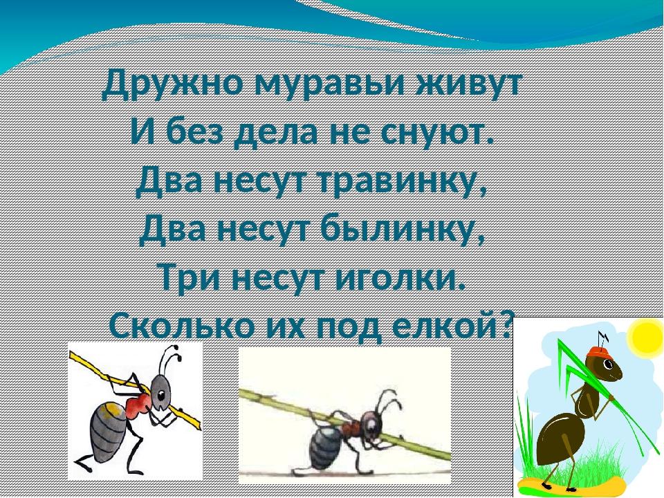 Дружно муравьи живут И без дела не снуют. Два несут травинку, Два несут былин...