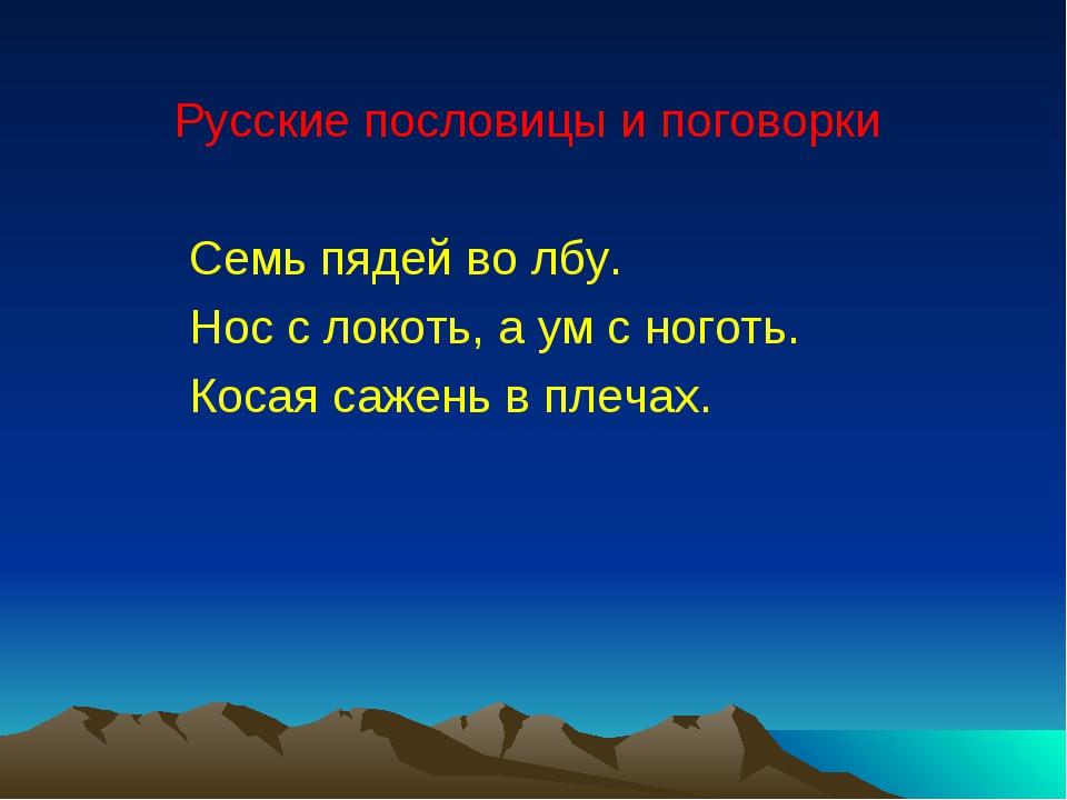 Русские пословицы и поговорки Семь пядей во лбу. Нос с локоть, а ум с ноготь...