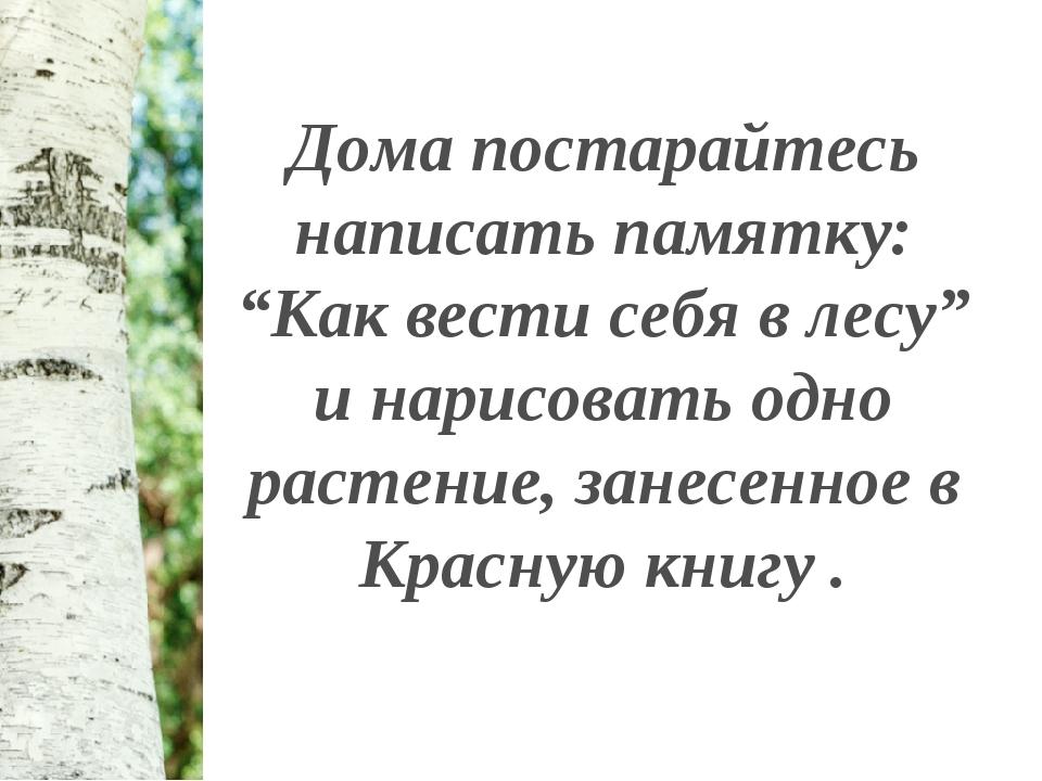 """Дома постарайтесь написать памятку: """"Как вести себя в лесу"""" и нарисовать одно..."""