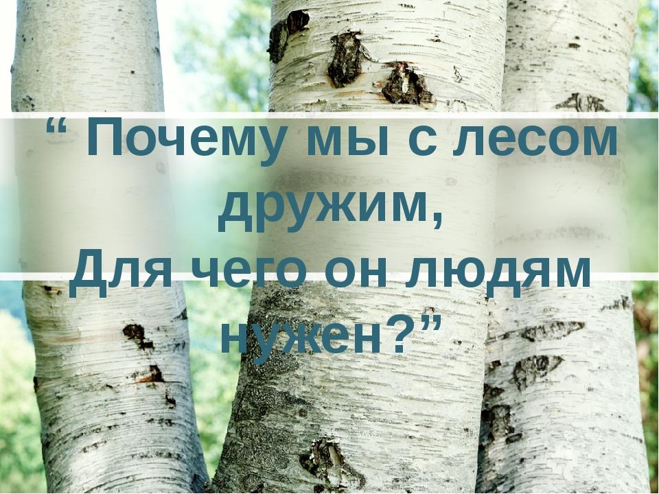 """"""" Почему мы с лесом дружим, Для чего он людям нужен?"""""""
