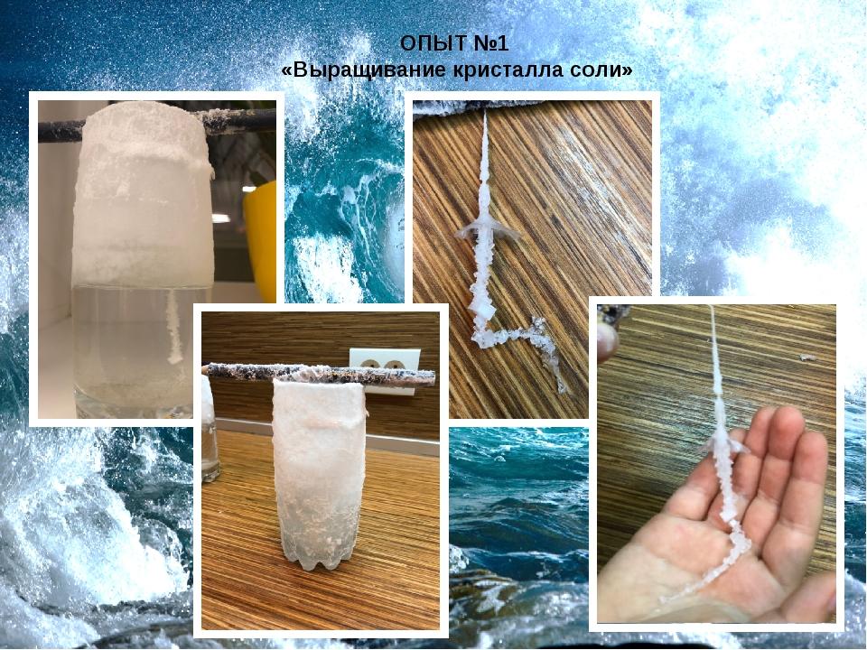 ОПЫТ №1 «Выращивание кристалла соли»