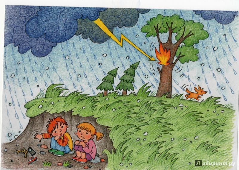 Картинки по безопасности в природе