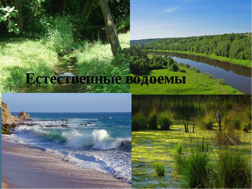 Естественные водоемы