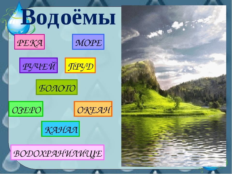 РЕКА МОРЕ БОЛОТО ПРУД РУЧЕЙ Водоёмы
