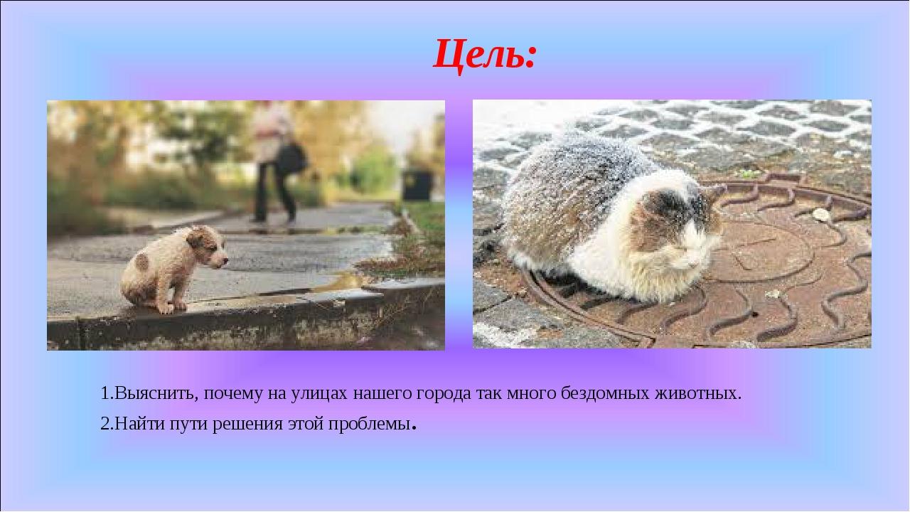 Цель: 1.Выяснить, почему на улицах нашего города так много бездомных животных...