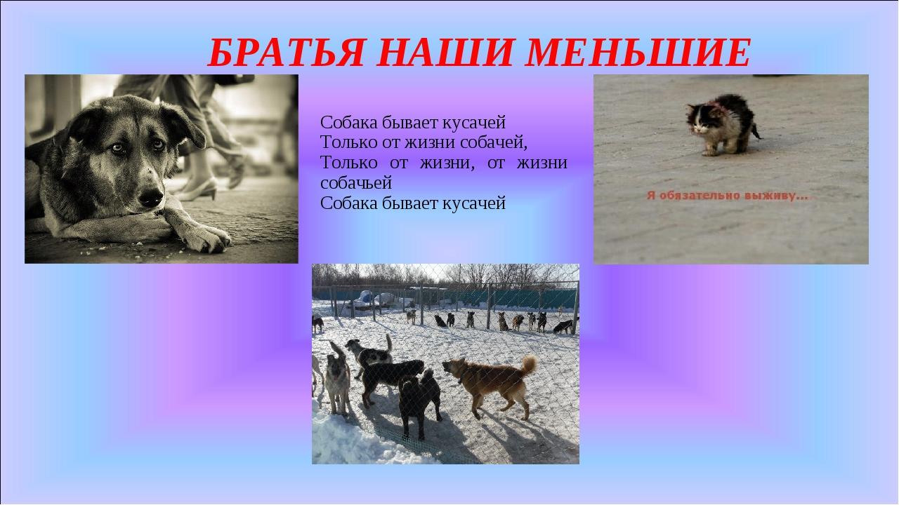 БРАТЬЯ НАШИ МЕНЬШИЕ Собака бывает кусачей Только от жизни собачей, Только от...