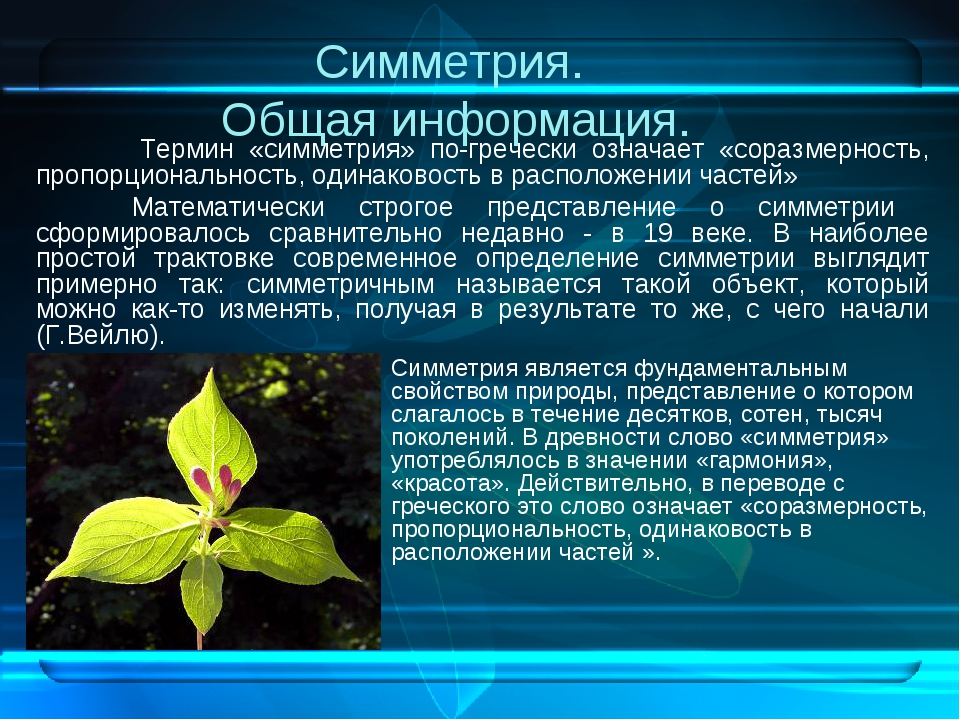 Симметрия. Общая информация. Термин «симметрия» по-гречески означает «соразм...