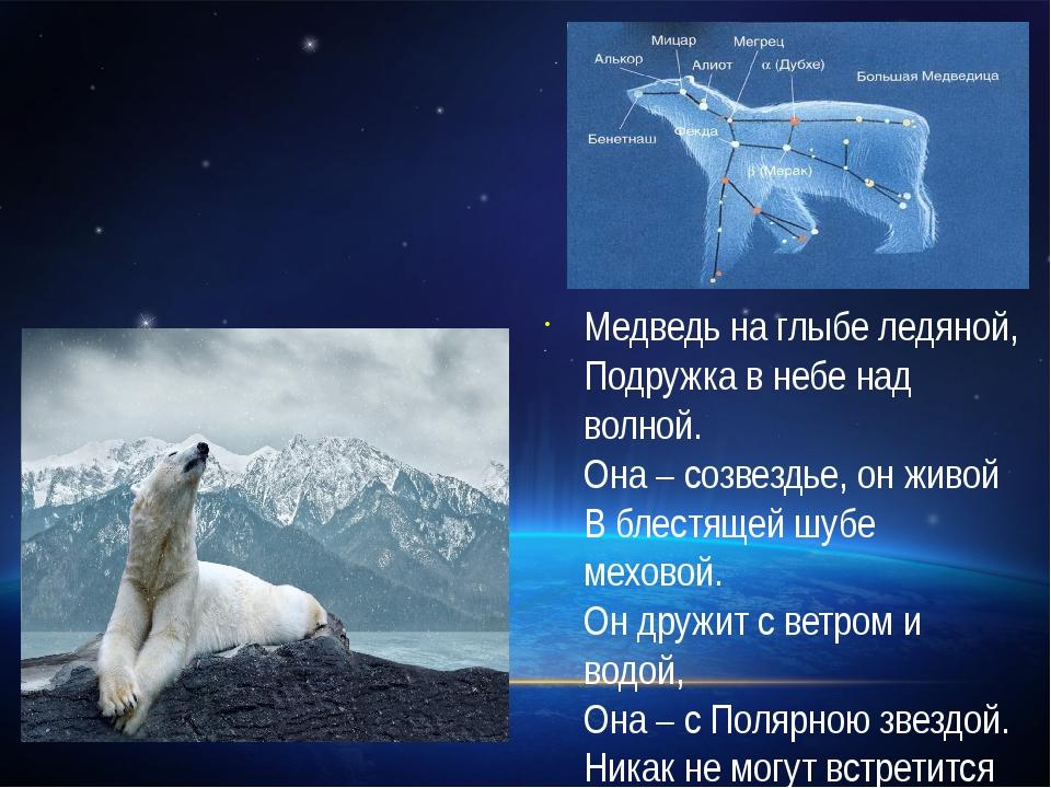 Медведь на глыбе ледяной, Подружка в небе над волной. Она – созвездье, он жив...