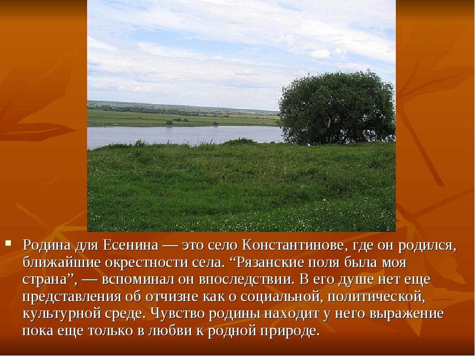 Родина для Есенина — это село Константинове, где он родился, ближайшие окрес...