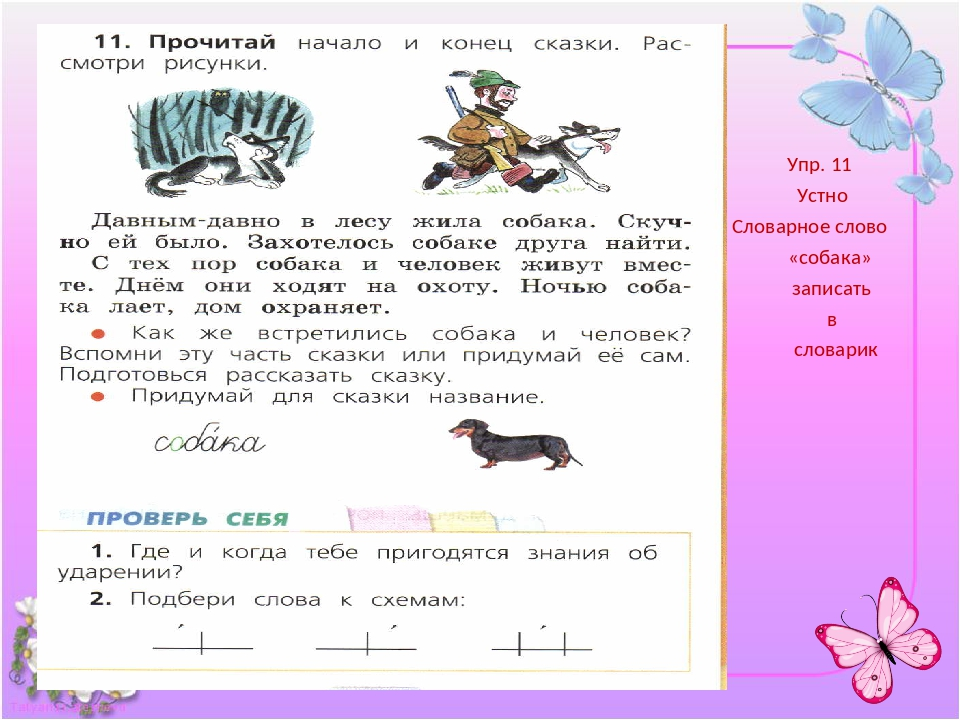 Упр. 11 Устно Словарное слово «собака» записать в словарик
