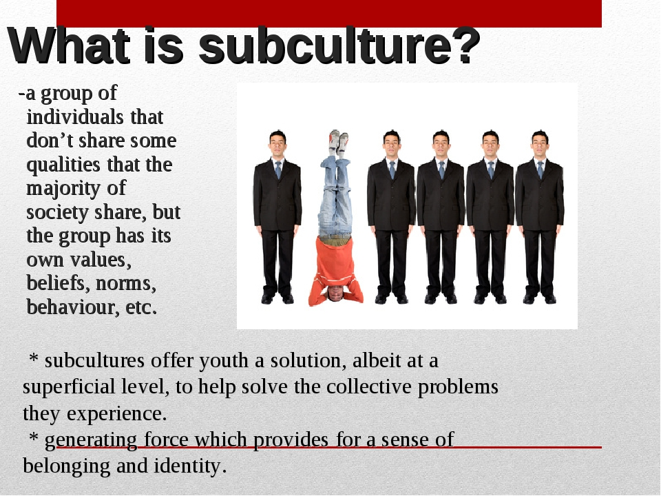What is subculture? -a group of individuals that don't share some qualities t...