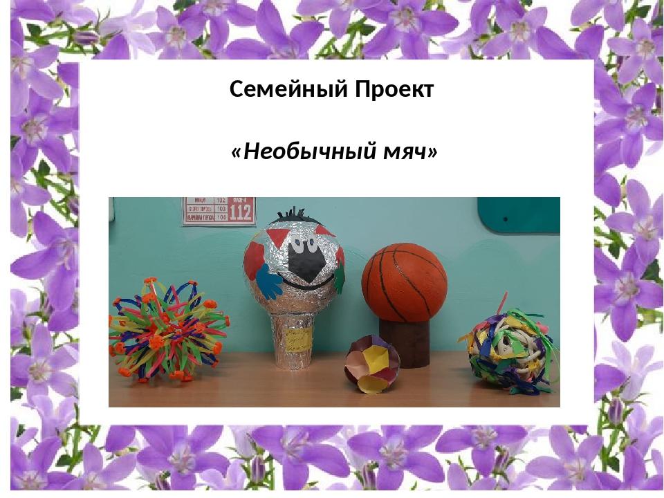 Семейный Проект «Необычный мяч»