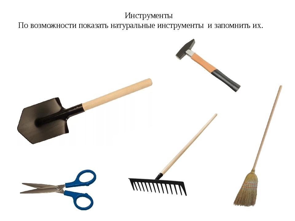 Инструменты По возможности показать натуральные инструменты и запомнить их.