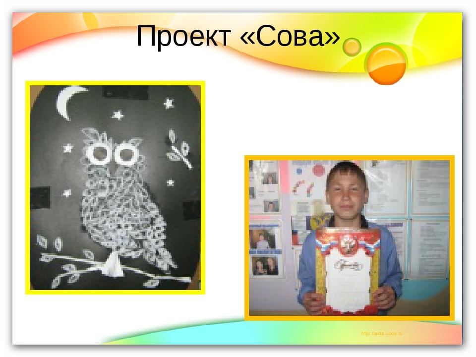 Проект «Сова»