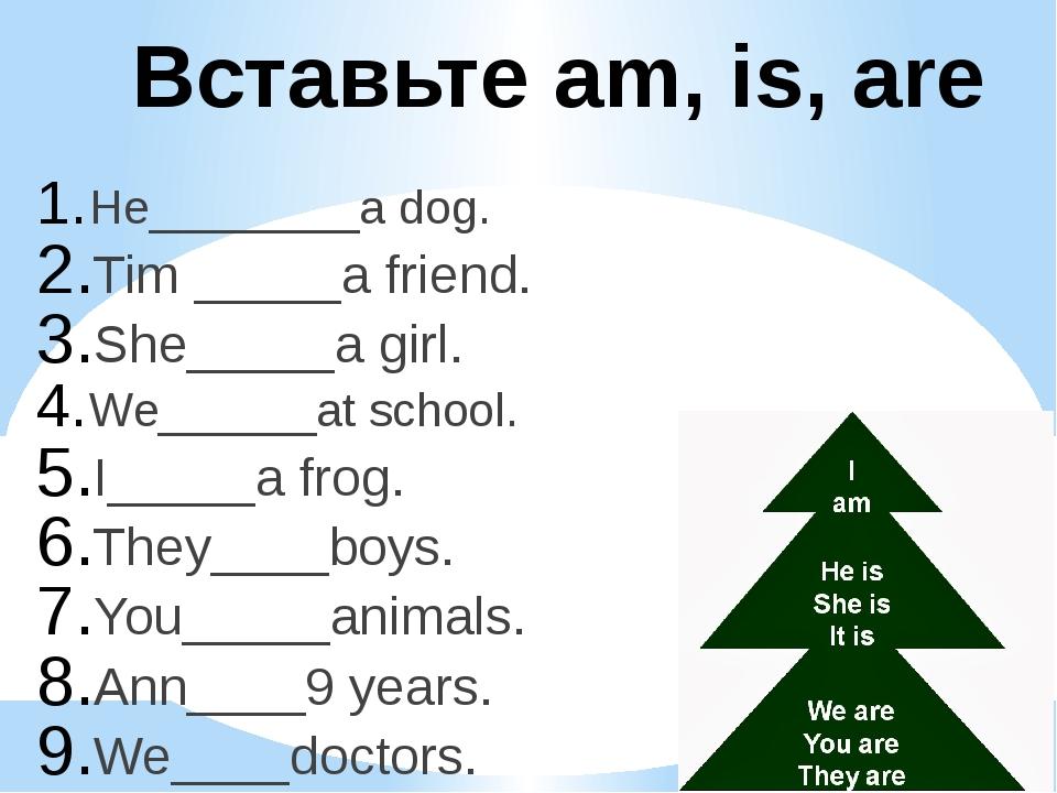 Вставьте am, is, are He________a dog. Tim _____a friend. She_____a girl. We__...