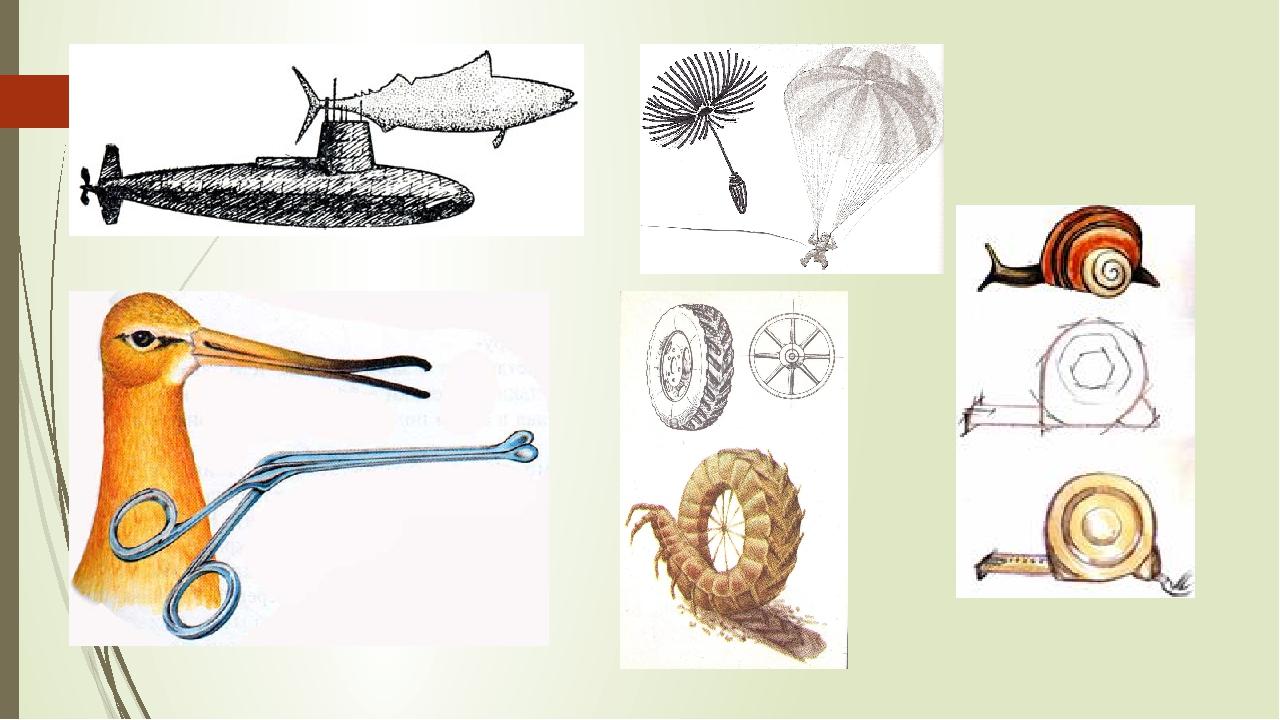 сделать голове бионика примеры картинки в картинках длине визуально вытянется